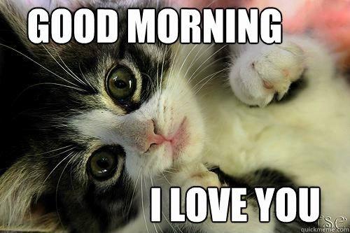 Funny Good Morning Memes Fresh Good Morning Memes Funny 9 — Mad Fun