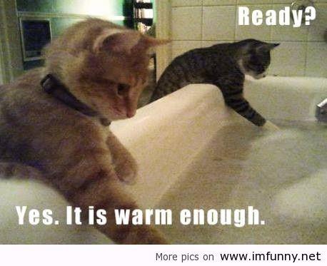 Checking the bath