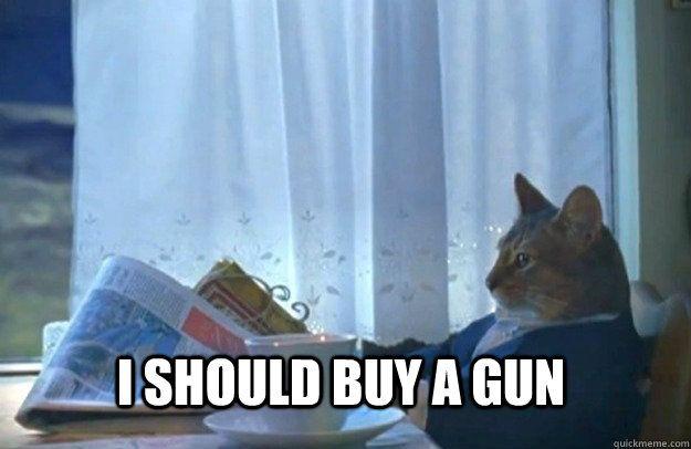 I should a gun I should a gun Sophisticated Cat