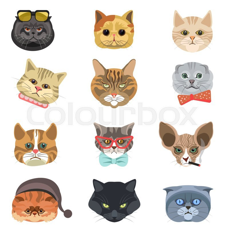 Funny cartoon cats heads and muzzle faces vector icons set Different cat breed types in hipster style Cute kitten pets in tie bow glasses smoking cigar