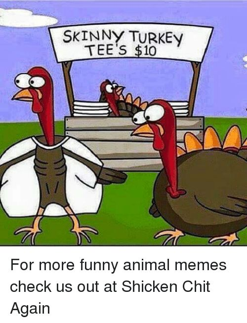 Funny Animals Memes and Skinny SKINNY TURKEy TEE s $10 For more funny animal