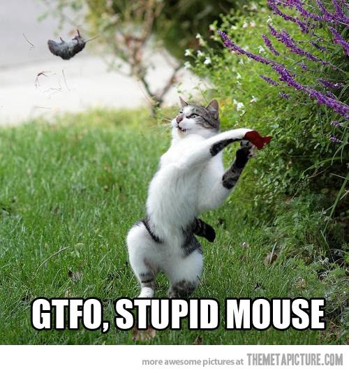 Go away mouse