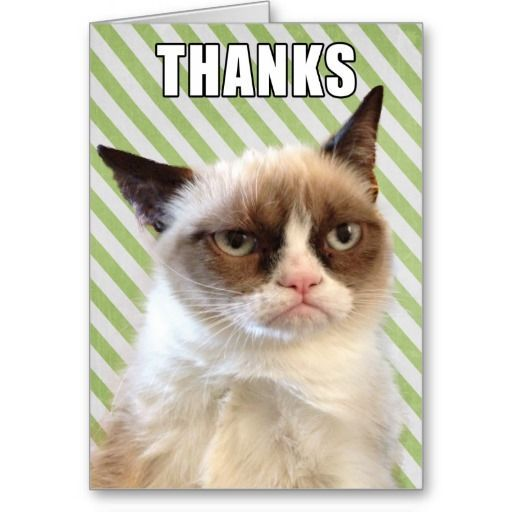 "This design features the original ©Grumpy Cat™ photo with ""THANKS"" on the front and ""FOR NOTHING"" on the inside"