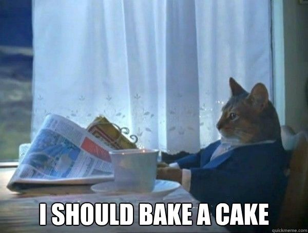 I should bake a cake I should bake a cake morning realization newspaper cat meme