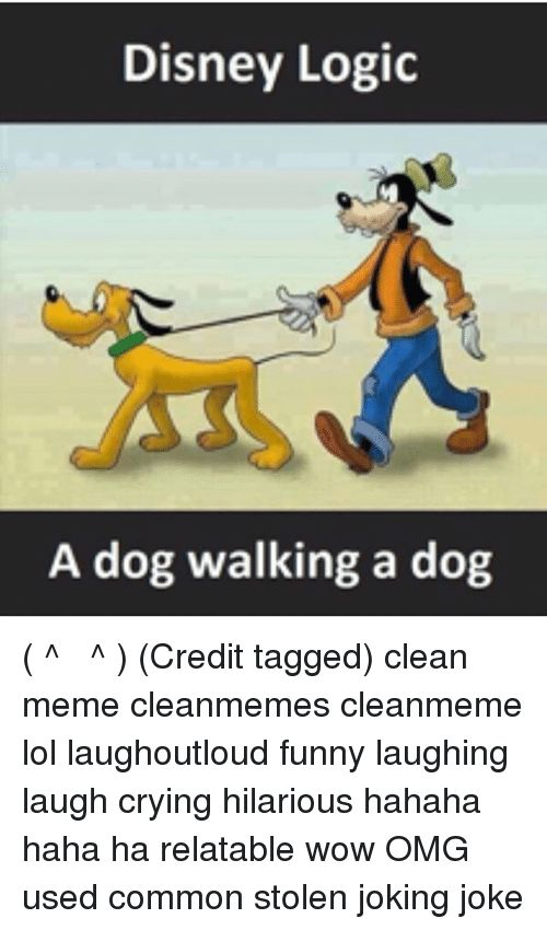Memes 🤖 and Stolen Disney Logic A dog walking a dog ͡
