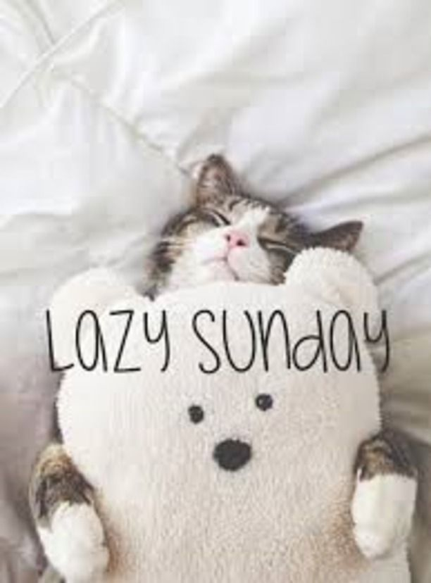It s a lazy Sunday till monday afternoon HaHaHa