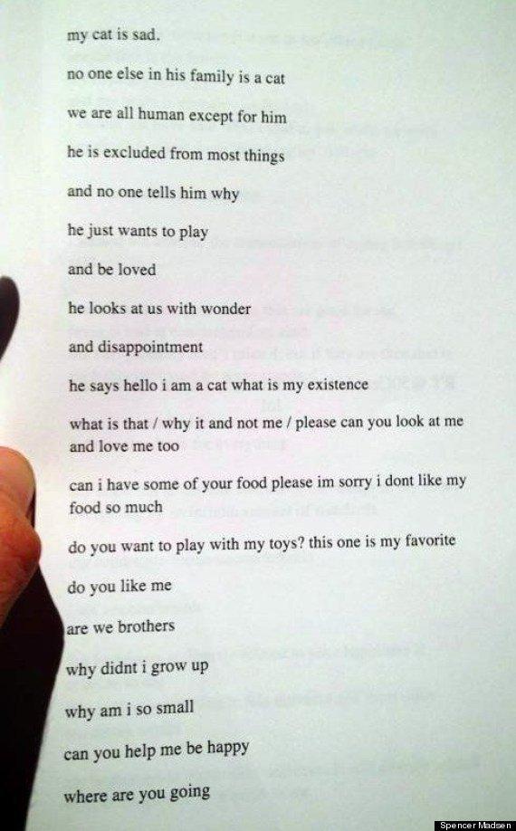 sad cat poem