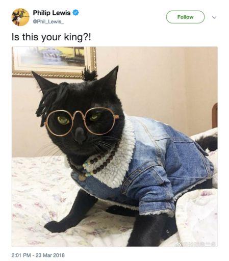 Black Panther memes