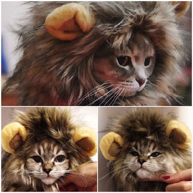 Furry Pet Hat Costume Lion Mane Wig For Cat Halloween Fancy Dress Up With Ears Party