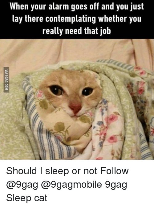 9gag Lay s and Memes When your alarm goes off and you just lay