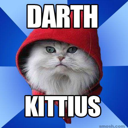 12 Darth Kittius