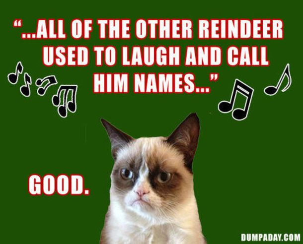 Gather the Marvelous Funny Cat Holiday Memes