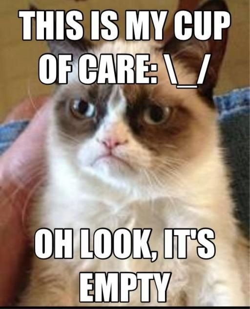 "Grumpy Cat shares her ""Cup of Care"""