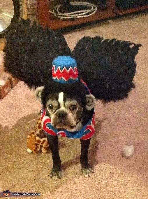 This homemade costume for pets entered our 2012 Halloween Costume Contest
