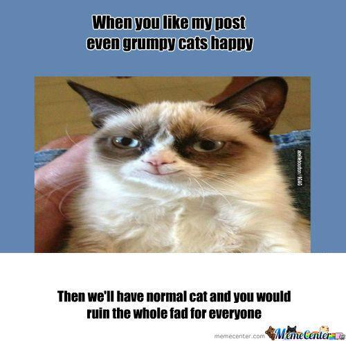 [RMX] Grumpy Cats Happy d