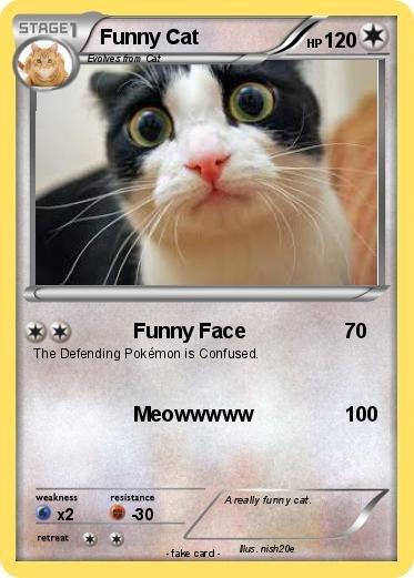 Pokemon Funny Cat