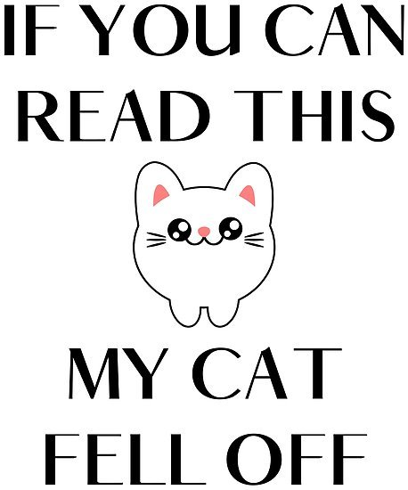 Funny cats quote If you can read this my cat fell off by xsylx