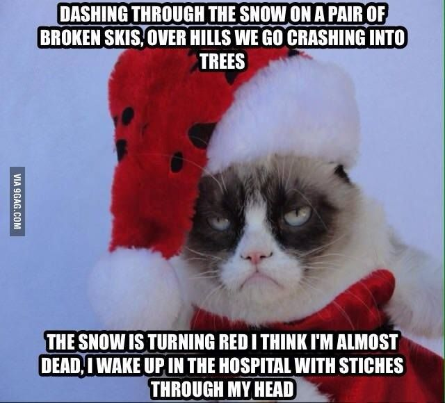 Holiday memes christmas kitties funnypictures 640x580 Holiday memes christmas kitties funnypictures