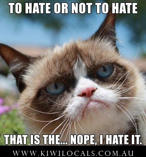Grumpy cat funny tard clean memes to be or not to be cat 494x533