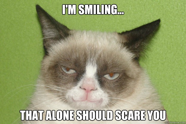 i m smiling that alone should scare you Grumpy cat on politics