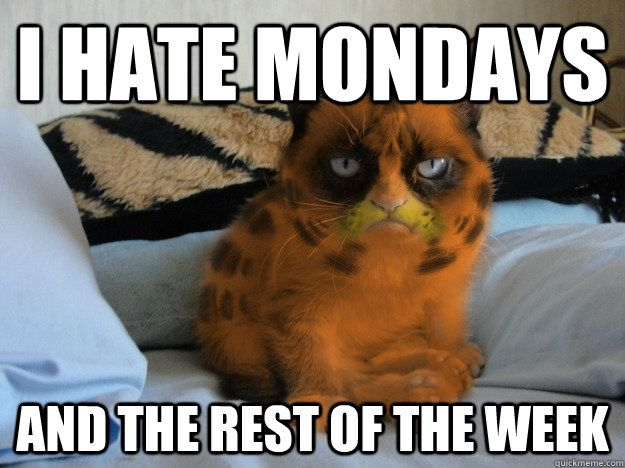 I hate mondays and the rest of the week