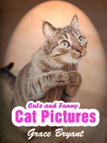 Funny Cat The Most Cute and Hilarious Cat with Captions by [Bryant