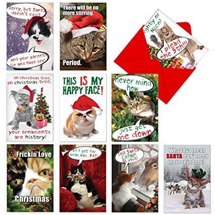 10 Boxed Petigreet Cat mass Cards Assorted Merry Christmas Cards w Envelopes