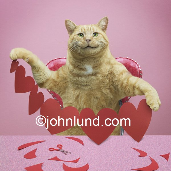 A valentine cat holds up a string of red paper hearts he as cut out with scissors in this funny animal stock photo