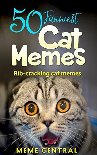 Cat Memes A collection of the funniest cat memes ever funny cat memes