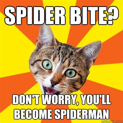 Don t Worry Cat Meme