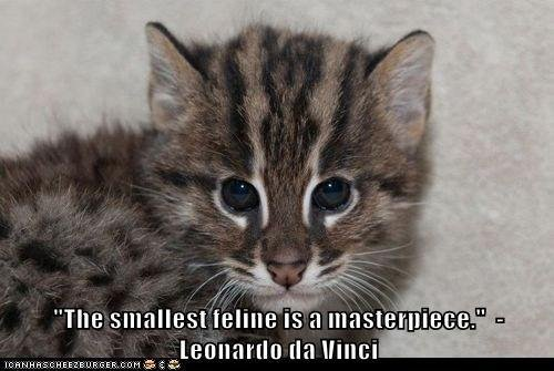 The smallest feline is a masterpiece