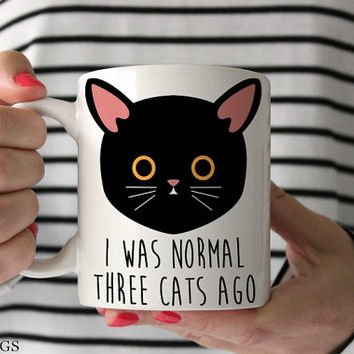 Funny Cat Mug Funny Mug Cat Lover Gift Cat Gift Cat Owner Gift Crazy Cat Lady
