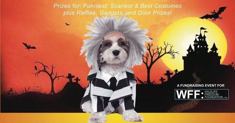 Roosevelt Islander line Wildlife Freedom Foundation Invites You To Roosevelt Island Halloween Dog Show Sunday October 30 Prizes For Funniest