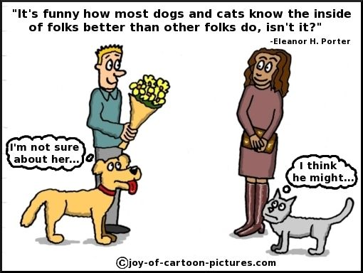 Funny How Most Dogs And Cats