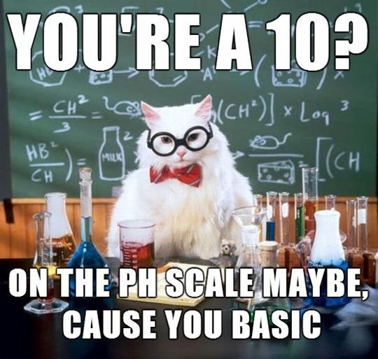 Get the Fresh Funny Cat Memes Birthday Scientist Cat