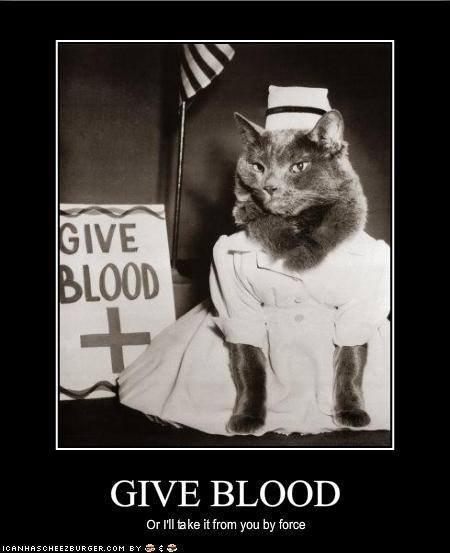 onlyanurse nurse memes funny nurse memes nurse humor funny nurse humor