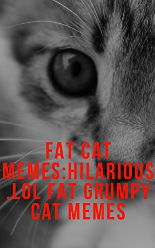 Fat Cat Memes Hilarious LOL Fat Grumpy cat Memes by [Kay Debby