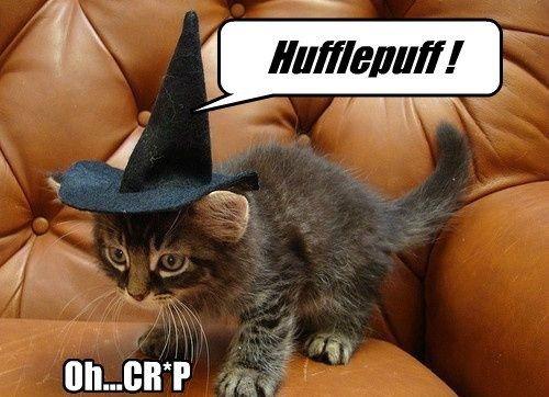 Harry Potter gryffindor funny