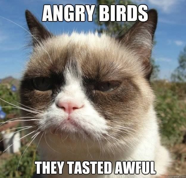 Angry Birds They Tasted Awful Funny Grumpy Cat Image