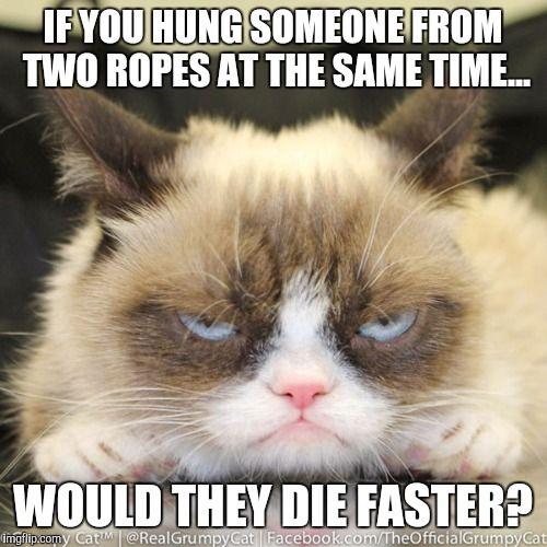 Grumpy Cat s Dark Ponderings