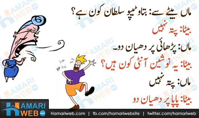 Get the Lovely Funny Cat Pictures In Urdu