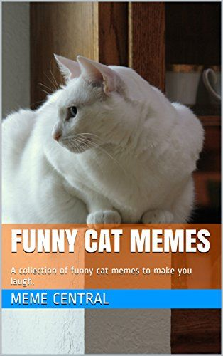 Funny Cat Memes A collection of funny cat memes to make you laugh