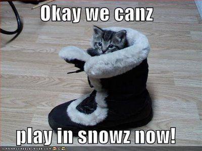 snow humor pics