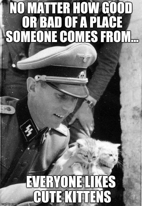 Get the Luxury Funny Cat Memes Nazi