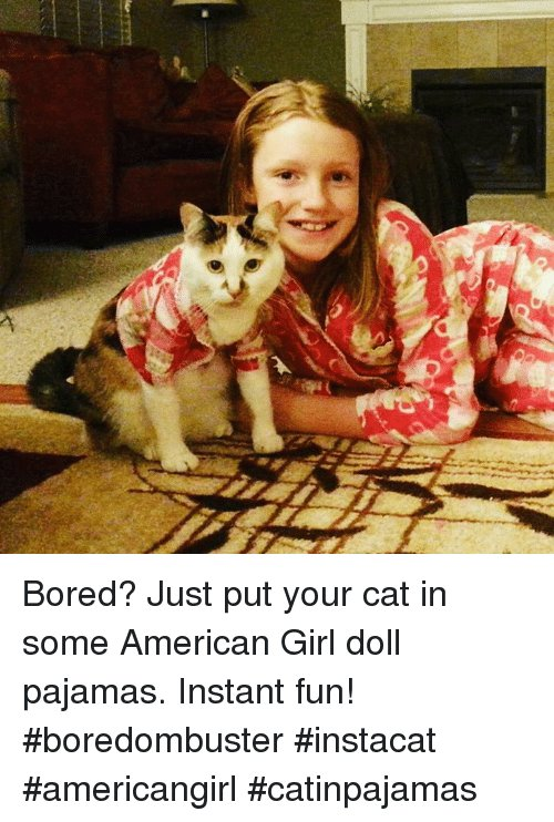 Bored Memes and American Girl Doll Bored Just put your cat in