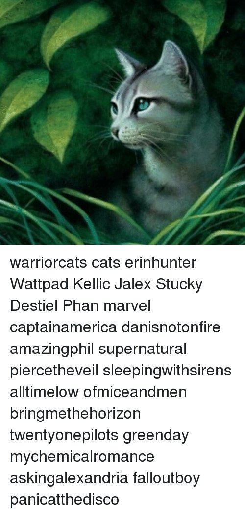 Collect The Inspirational Funny Warrior Cat Erin Hunter Memes