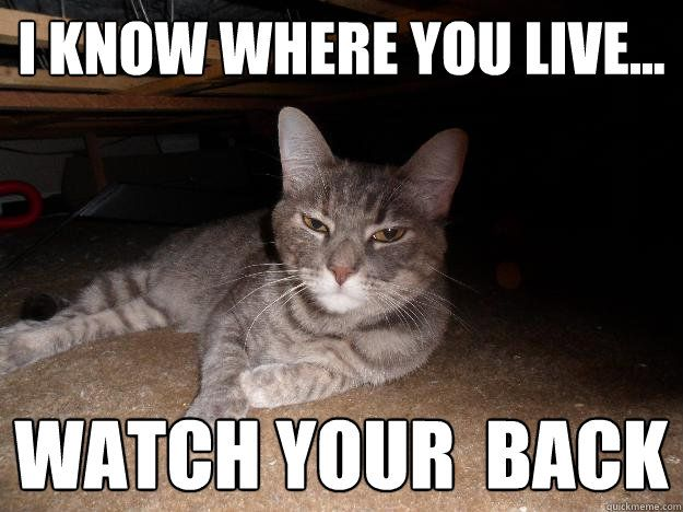 i know where you live watch your back Appy cat