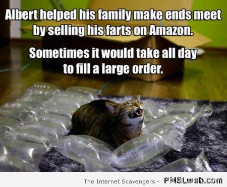 19 funny farting cat meme