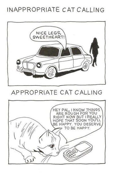 Inappropriate Cat Calling funny