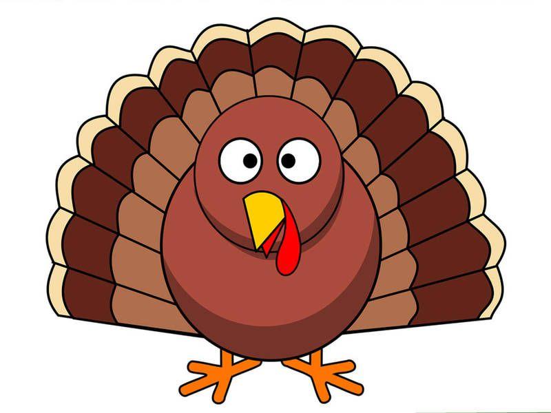 Thanksgiving Turkey Trots In California 2017